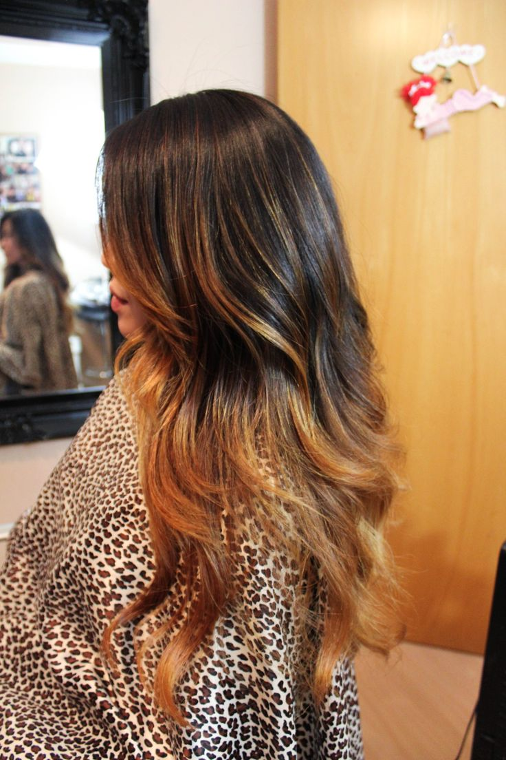 Ombre Dark Brown To Golden Honey Blonde Hair