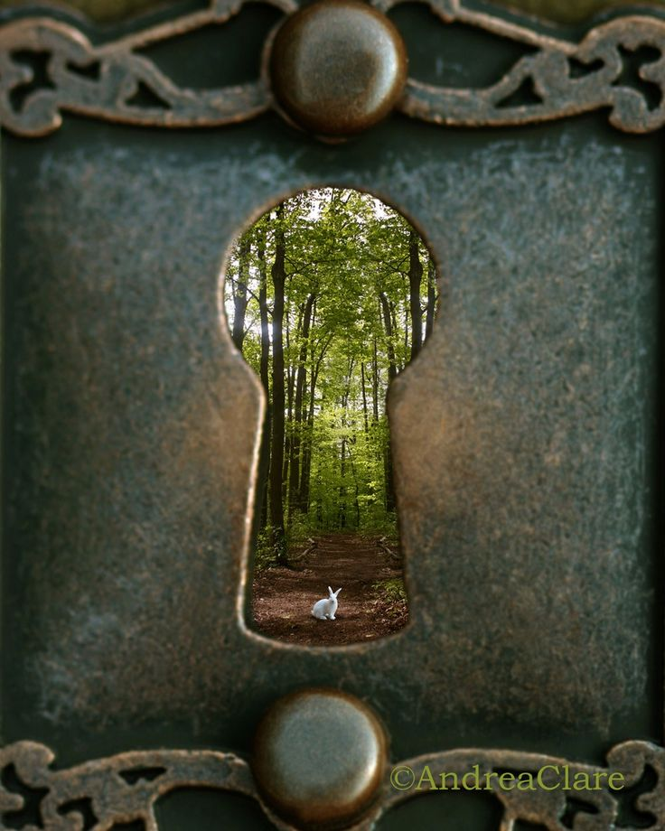Alice in Wonderland Follow Me 8x10 Fine Art Photograph. $23.00, via Etsy.