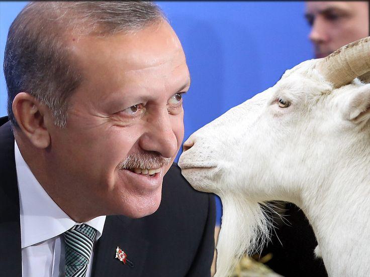 Read In Full: Banned 'Goat F**king' Poem About President Erdogan