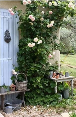 A green wall like these beautiful climbing roses adds proportion, colour & fragrance. It cools the building and provides the perfect backdrop for contrasting collections of your favourite garden tools, pots and watering cans. Locating collections either side of a vertical garden unifies the space and creates more visual appeal. More garden design ideas @ http://themicrogardener.com/design/ | The Micro Gardener