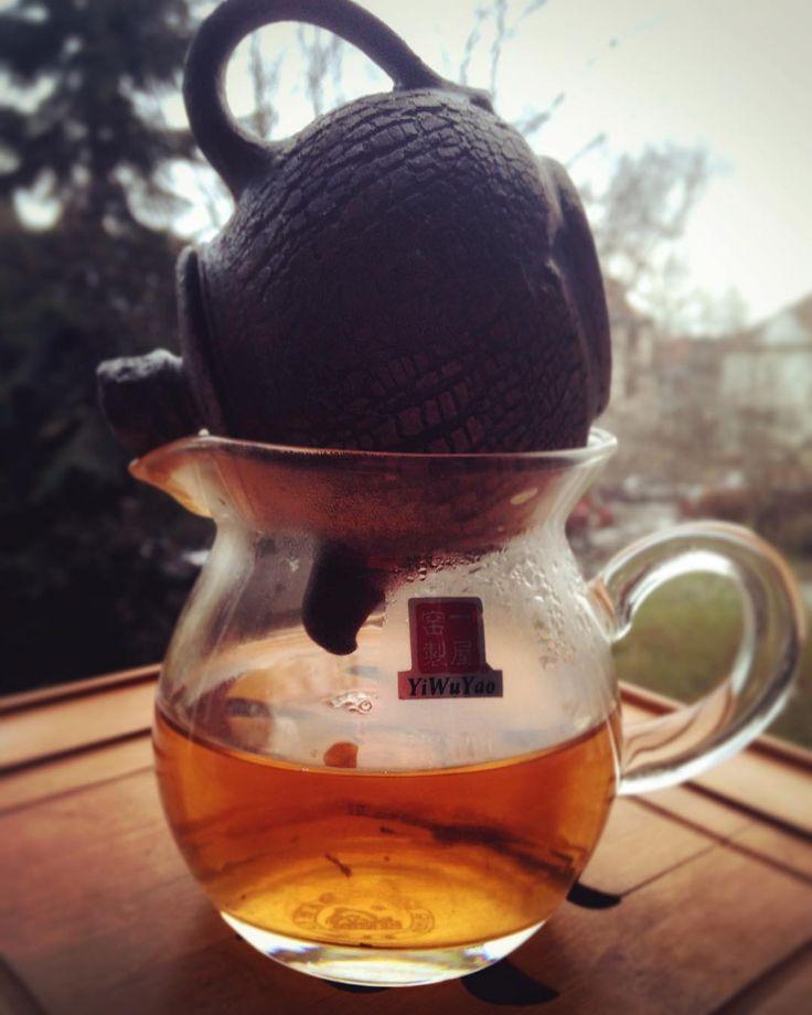 #teatime #tealover #teaaddict #tea #freezing #illness #athome Čaj a seriály s Jendou cely víkend.Musí se mi uzdravit!☕️#klubkocajuje