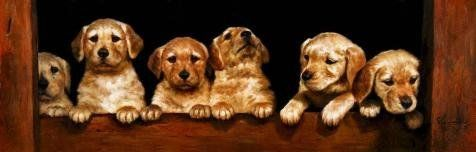 Oil Painting Cute Golden Retriever Puppies Printing On Perfect Effect Canvas  18x56 Inch  46x143 Cm the Best Kids Room Decor And Home Gallery Art And Gifts Is This Best Price Art Decorative Prints On Canvas
