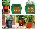 Как выращивать картошку в мешках — Полезные советы