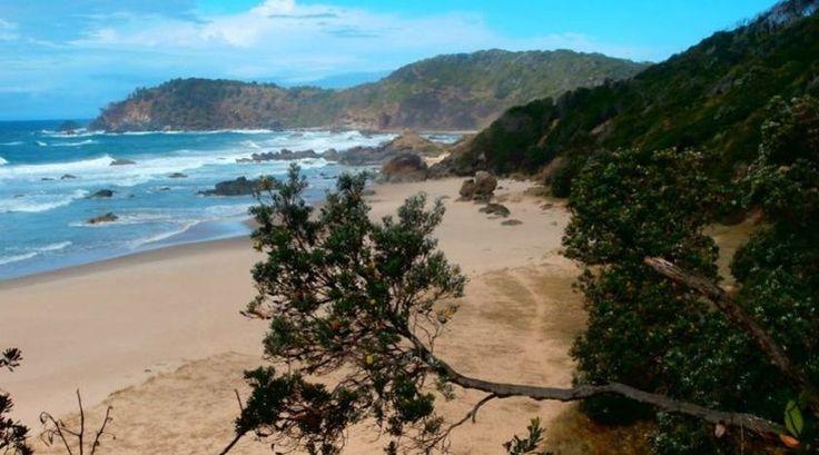 """""""Ik begon met de Coastal Walk, een wandeling van ongeveer 8 kilometer langs schitterende kustlijnen, palmbomen, stranden en rotsen"""""""