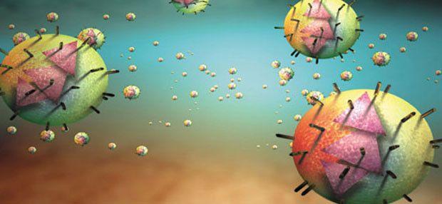 Hepatita C, netratata, evolueaza in ciroza si cancer hepatic