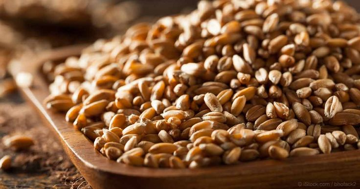 Farro is an ancient grain rich in antioxidants, fiber and protein, and makes a hearty and satisfying addition to salads, soups and stews. http://articles.mercola.com/sites/articles/archive/2017/07/03/farro.aspx?utm_source=dnl&utm_medium=email&utm_content=art3&utm_campaign=20170703Z1&et_cid=DM152034&et_rid=2068066025