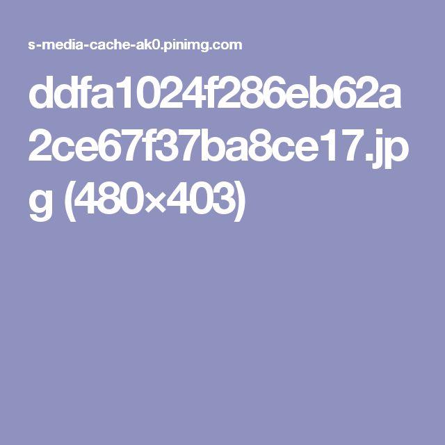 ddfa1024f286eb62a2ce67f37ba8ce17.jpg (480×403)