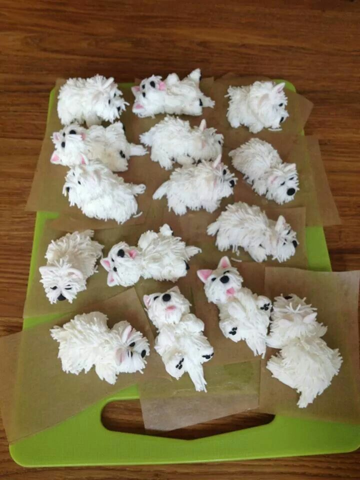 Westies Cream de Cakes......   from a FB account