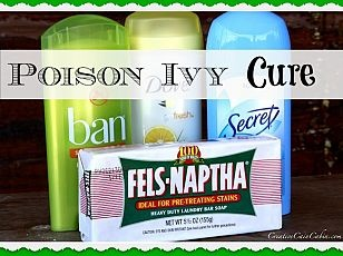 Poison Ivy Cure - At this points I'm willing to try anything :-/ sighhhh!!!!