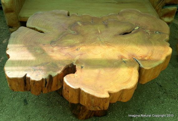 Large Naturally Unique Cypress Tree Trunk by ImaginaNatural