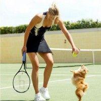 #dogalize Maria Sharapova e il suo Pomerania Dolce #dogs #cats #pets
