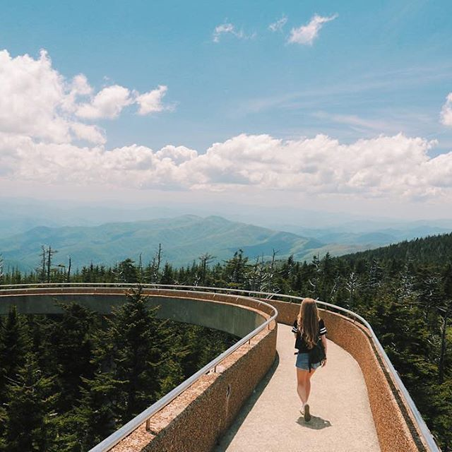 Best 25+ Great Smoky Mountains Ideas On Pinterest