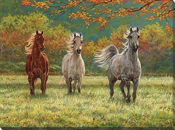 F195050081: Autumn Meadow Wrapped Canvas Art by Chris Cummings
