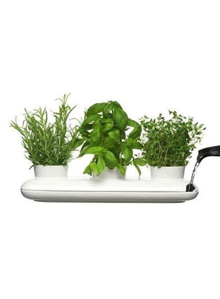 Herb Pot Trio design by Sagaform