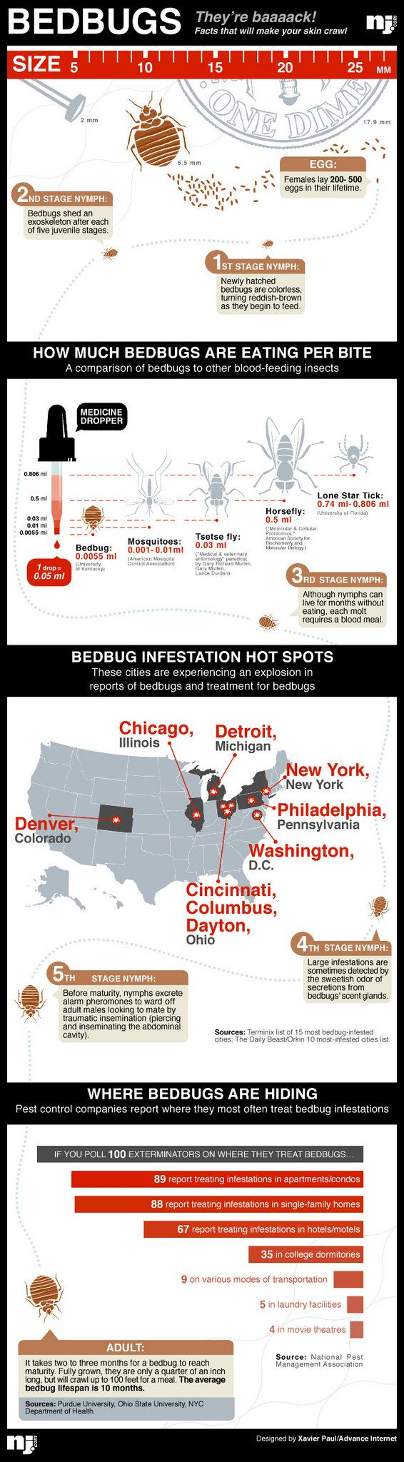 The Resurgence of Bedbugs and How to Get Rid of Them Bed