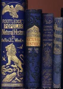 WOW! Stunning art work on vintage blue books ♥
