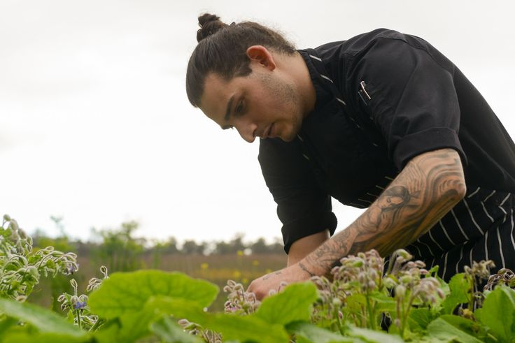 The Aravina kitchen team hard at work in the gardens, picking the very best produce for the restaurant to use.