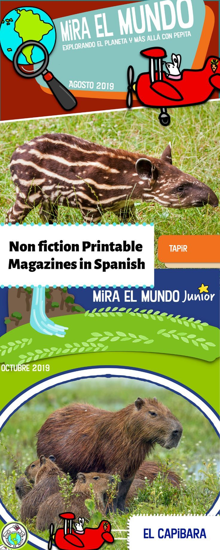 Mira El Mundo Junior Non Fiction Magazine For Elementary Spanish 2019 2020 With Images Learning Spanish Spanish Basics Spanish Lesson Plans
