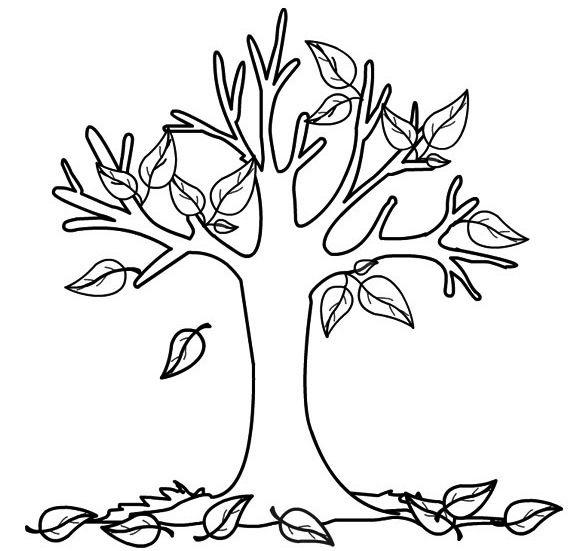 albero_autunno_da_colorare_16.jpg (572×551)