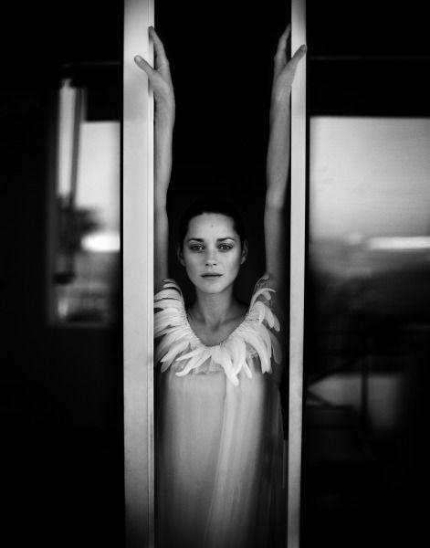 Marion Cotillard by Patrick Swirc.