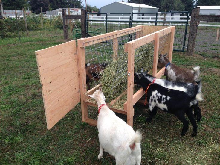 Best 20+ Goat Feeder i...