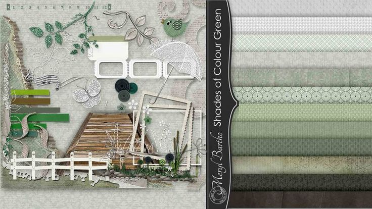 Shades of Colour Green Combo