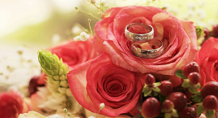 Rings 💍 #wedding