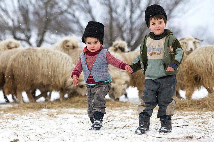 winter in #Romania - wild wonderful ....