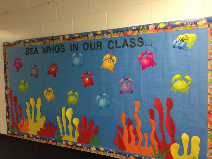Classroom Board Ideas For Preschool ~ Best ideas about beach bulletin boards on pinterest