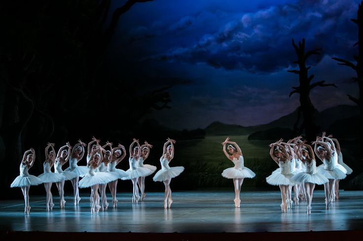 The overall view of the swans corp is wonderful in the hunarian-hollander version of Swan lake. Come to see itt in Hungary, Budapest! ;)