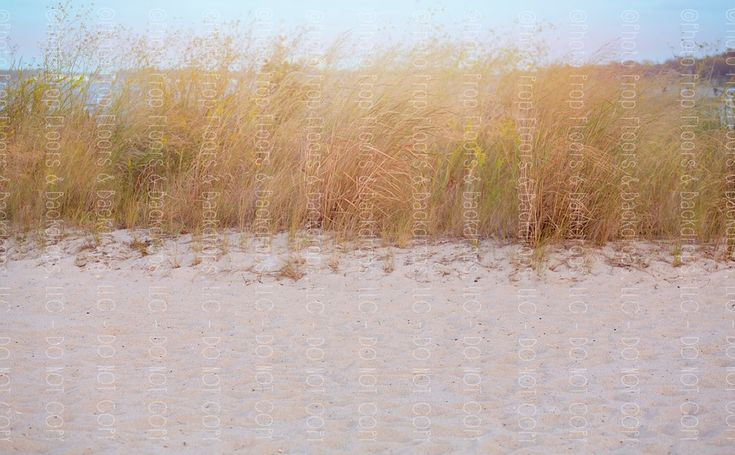 Newborn Beach Backdrop, Beach Backdrop, Nautical Backdrop. Sandy Beach Photography Backdrop. Wrinkle Free Fabric Backdrop.