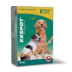 The moment you get brand-new dolly dog, you would certainly want probably to invest fairly a great deal time with it as you educate it as received immagini di cani for this reason you you will certainly need some canine training materials which are necessary.