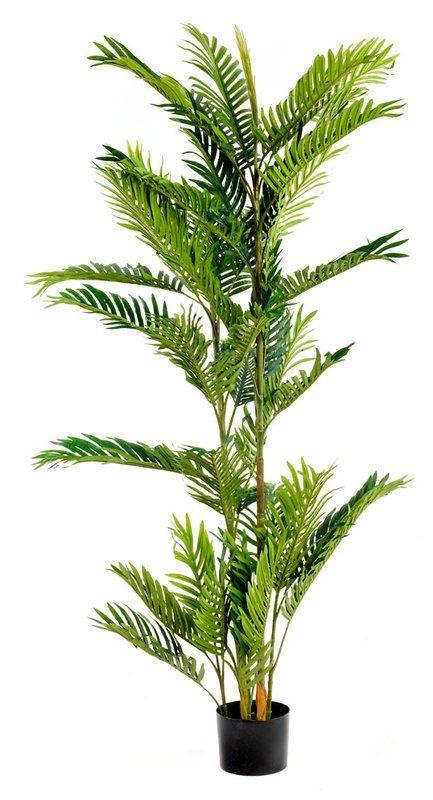 Künstliche Palme, H150cm. 68,99€, wayfair.de