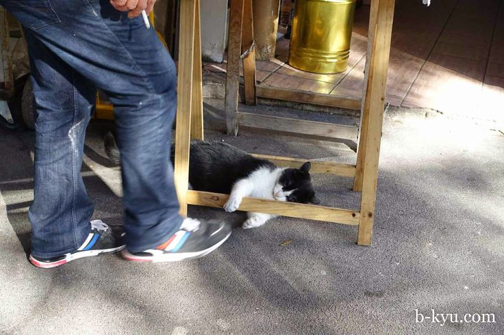 Belleville Cat: B-Kyu: Paris ~ West African, Moroccan and Jewish Tunisian Food