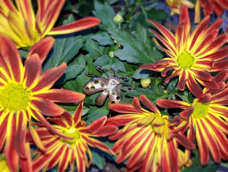 iPhone 6 - kleurrijke bloemen