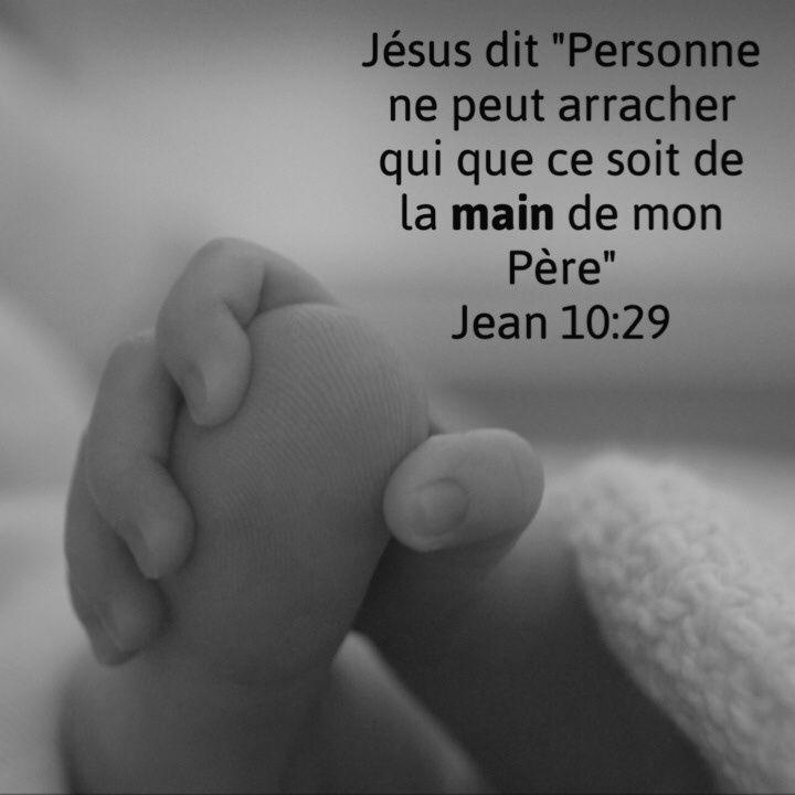 """La Bible - Versets illustrés - Jean 10:19 - Paroles de Jésus     Mes brebis entendent ma voix. Moi, je les connais, et elles me suivent. Je leur donne la vie éternelle; elles ne périront jamais, et personne ne les arrachera de ma main. Mon Père, qui me les a données, est plus grand que tous; et personne ne peut les arracher de la main du Père."""""""