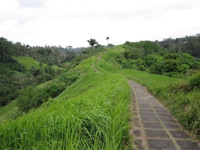 une belle chemin a Ubud