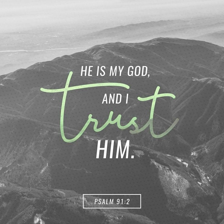 I will say of the Lord , He is my refuge and my fortress: my God; in him will I trust. Psalms 91:2 KJV http://bible.com/1/psa.91.2.KJV