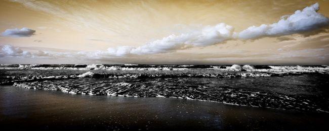 > Le spectre d'une nouvelle marée noire plane sur le Golfe du Mexique.  Un an et demi après la terrible marée noire provoquée par BP dans le Golfe du Mexique, le spectre d'une nouvelle catastrophe plane à nouveau. L'apparition de tâches de pétrole, observées le 23 août 2011 tout prêt du fameux puits Macondo colmaté par BP, inquiète au plus haut point. BP nie toute responsabilité.