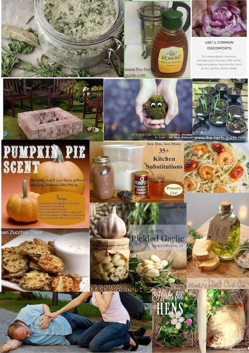 Garlic issue of Herb Guide News covering preserving and using garlic along with ideas for homemade gifts and dozens of other articles.
