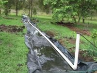Open wicking bed  waterright australia - water crisis solutions - wastewater treatment greywater recycling