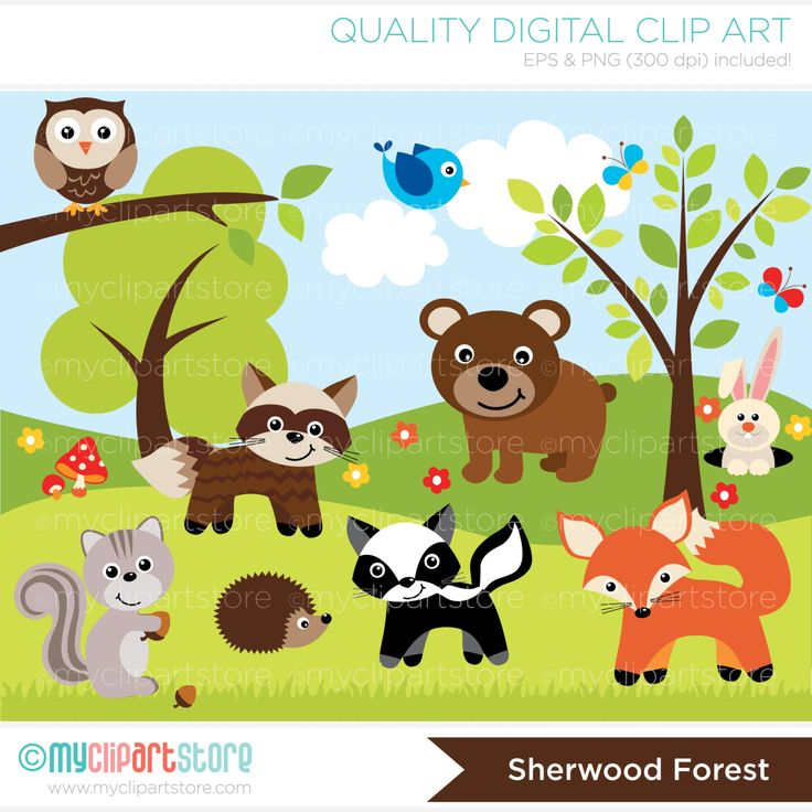 Woodland Sheerwood Forest Animals Clip Art By MyClipArtStore