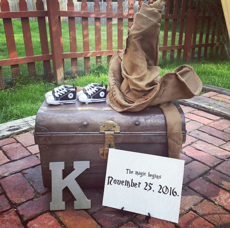 Harry Potter Baby Announcement - Twins