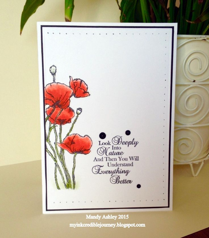 SNVR1: Created using Sheena Douglas Poppy stamps & sentiment
