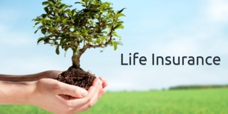 #Life_insurance_agent Save on life insurance with independent professional advice. Shop for the best life insurance rates in seconds, compare companies, products and prices.  http://iassure.ca/en/life-insurance-home/