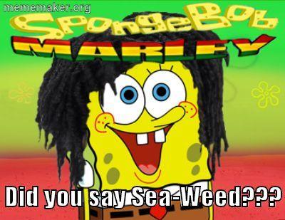 SpongeBob Marley  Meme Maker  Make a Meme Online