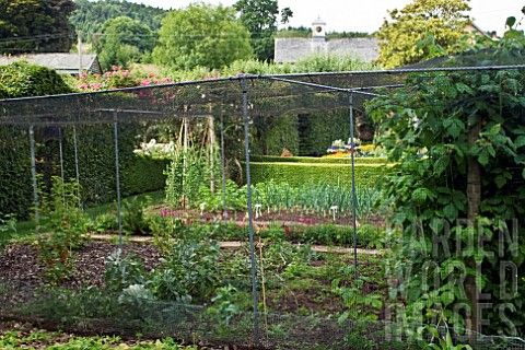 The formal vegetable garden and fruit cages at bickham for Formal vegetable garden design