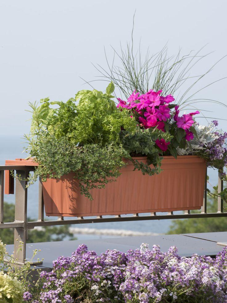 best 25+ deck railing planters ideas only on pinterest   railing ... - Patio Flower Boxes Ideas