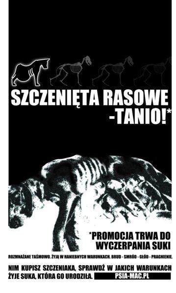 Plakat B1 (PL)