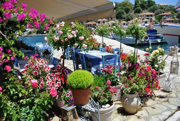 Flowers at the port of Vathy